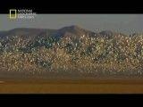 مستند طبیعت روسیه دره های کهن-National Geographic Primeval Valleys