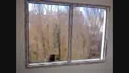 درب و پنجره یوپی وی سی در اصفهان-09131132026