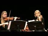 ویولن زیبا ساخته  Vivaldi