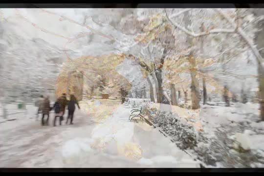 برف نو، شعر و صدای احمد شاملو