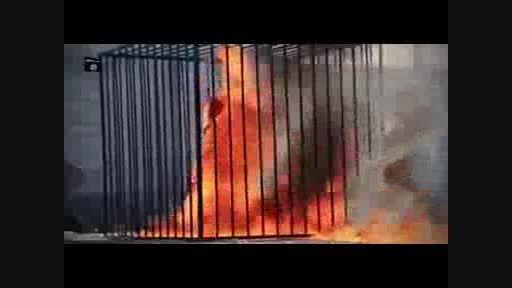 جنایات داعش.آتش زدن خلبان.+18
