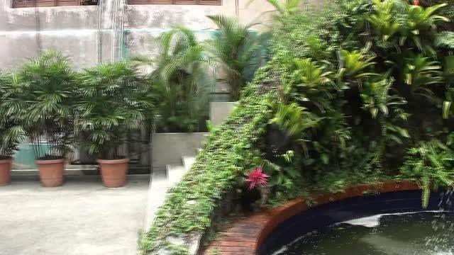 آب نمایی دیدنی در مرکز شهر کوالالامپور