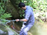 جنگل لفور و آبشار گزو