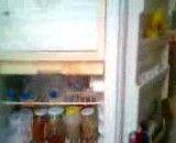 در یخچال