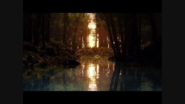 غزل 254- دیگر ز شاخ سرو سهی بلبل صبور