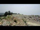 وضعیت جنگل شهری که سازمان جنگلهای مراتع وآبخیز داری کل کشور در آن مستقر است