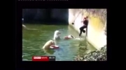 کلیپ / سقوط یک زن تماشاگر در استخر مخصوص خرسهای قطبی