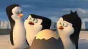 تریلر فیلم پنگوئن های ماداگاسکار