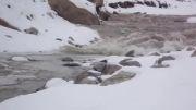 شکار آمدن سیل در رودخانه شهر سیس در فصل زمستان