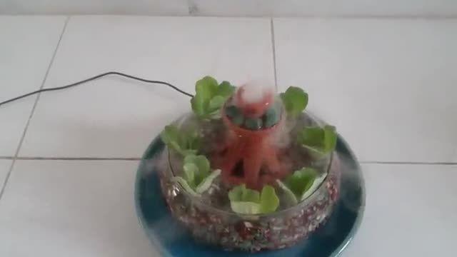 گلدان مجهز به سیستم بخار سرد