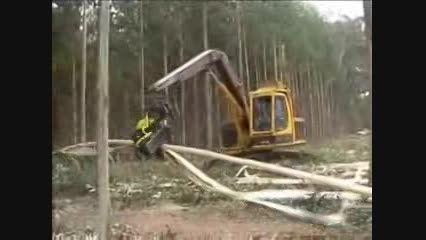 ماشین آلات پیشرفته درخت بری در استرالیا