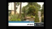 گشایش باغ موزه قصر