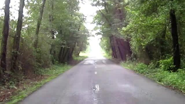 موتورسواری در جنگل های شمال!