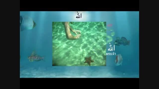 4-معجزات آفرینش خداوند ( سبحان الله )