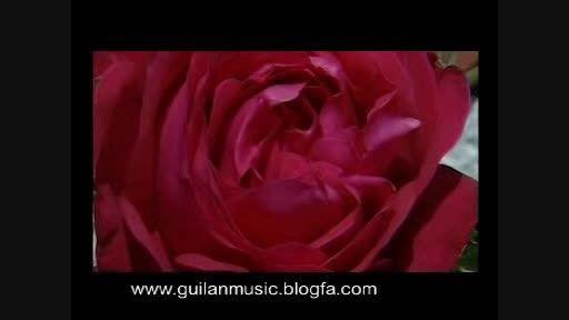 ترانه مذهبی (ساربان )با صدای سید مسعود سلیمی