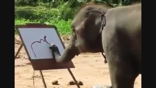 نقاشی کشیدن فیل ها ...