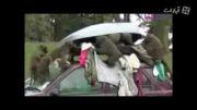 دزد پشمالو طبیعت جنگل پارک+دانلود فیلم طنز گلچین صفاسا