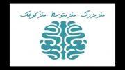 استاد رائفی پور: مغز بزرگ - مغز متوسط - مغز کوچک
