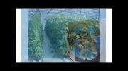 فن مرغداری،تهویه گلخانه،هواکش