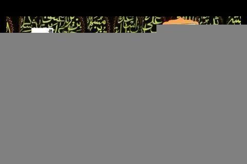 سخنرانی حجت الاسلام و المسلمین ثمری - موکب امام رضا(ع)