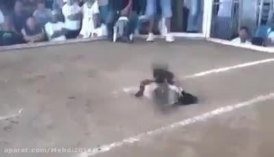 حادثه باور نکردنی!! قطع شدن سر خروس در خروس جنگی