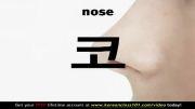 آموزش زبان کره ای (یادگیری لغات با عکس؛ اعضای بدن)