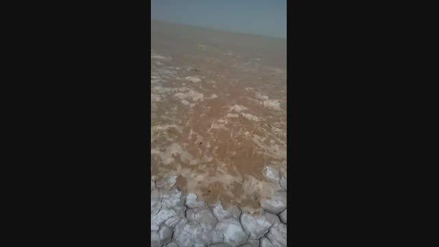 ورود آب به هامون -خبرسیستان
