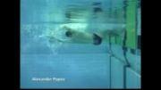 فیلم کامل آموزش شنا از مقدماتی تا پیشرفته(دوبله به فارسی)