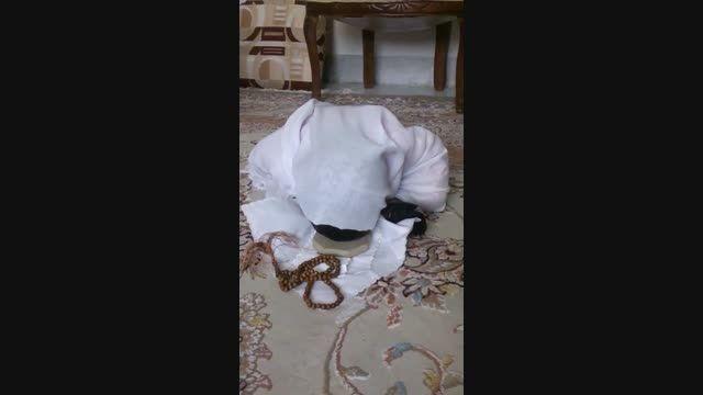 نماز خواندن کودک یک ساله در روز تولد حضرت محمد
