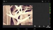 اندروید 4.4 کیت کت به همراه یک ویرایشگر تصویر قدرتمند ارائه