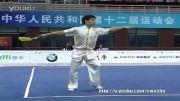 ووشو،مسابقات فینال داخلی چین 2013، جی ین شو ، مقام دوم