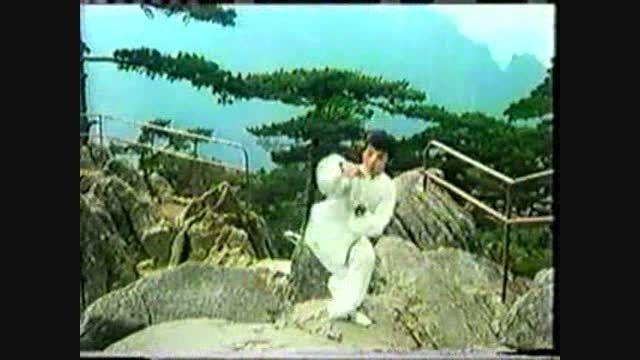 ووشو؛ اجرای فرم سنتی تقلیدی از دُرنا، دهه 80 میلادی