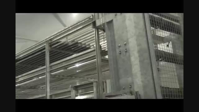 مزرعه تولید قارچ در آمریکا