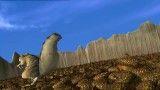 بلوط های سنجاب عصر یخبندان