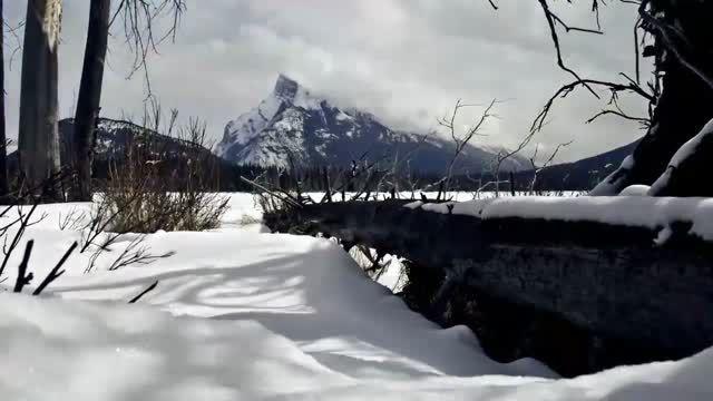 سوره تکویر - یوسف کالو علی + مناظر طبیعی (HD)
