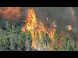 آتش سوزی گسترده در جنگلهای کلرادو