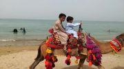 شتر سواری در پلاژ ساحلی طیس