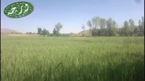 روستای ورچه ورچمن.طبیعت با موسیقی اندک اندک