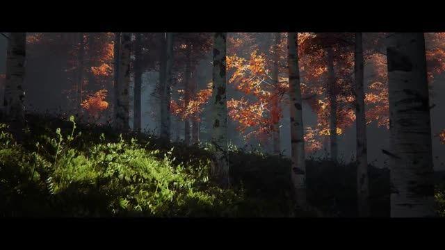بهار و بارش باران در جنگل آنریل انجین 4