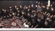 سینه زنی مهاجرین افغانستان مقیم تهران-شهریار در محرم92