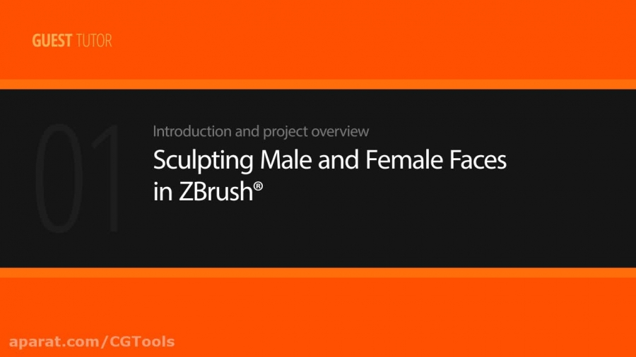 Sculpting Male and Female Faces in ZBrush