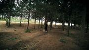 شلیک عادل به سمت حسین جنگی --کارگردان  جلوه های ویژه