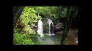 سفر دکتر میرزاده به سرزمین آبشارهای جنگلی