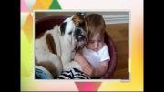 سگ ها پرستار بچه