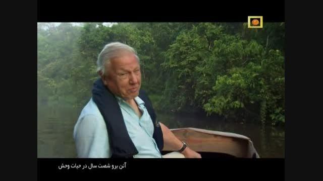 مستند اتنبرو 60 سال در حیات وحش با دوبله فارسی - قسمت 1