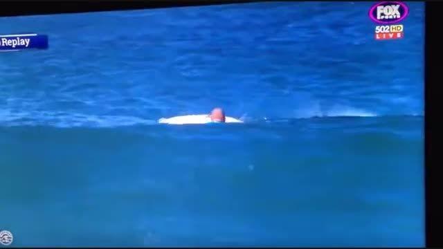 Shark Attack #1