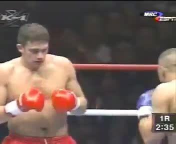 مبارزه ژروم لی بَنِر و پیتر آرتز 1997