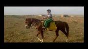 اسب کرنگ