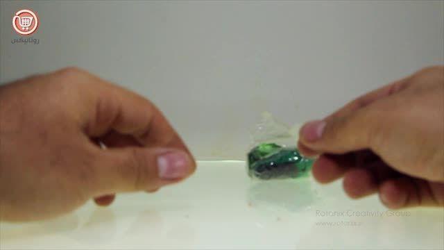 پازل سه بعدی حشرات