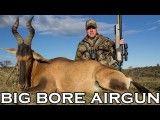 شکار  آهو با تفنگ بادی pcp